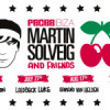 Martin Solveig and Friends